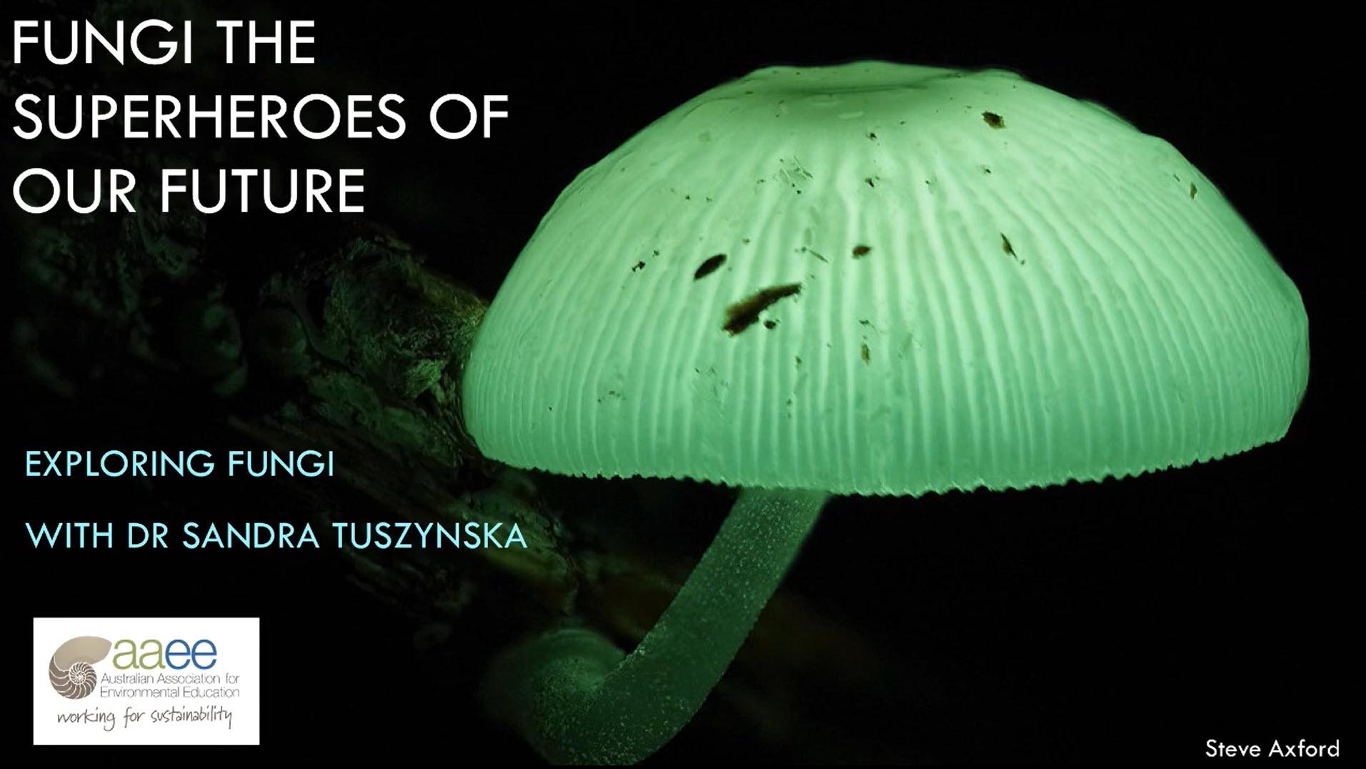 Fungi superheroes