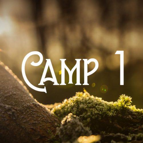 BushtimeSummer2020_Camp1