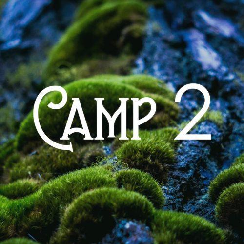 BushtimeSummer2020_Camp2