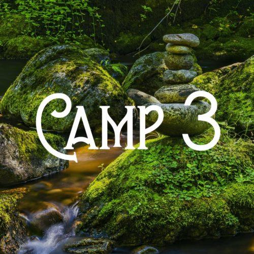 BushtimeSummer2020_Camp3
