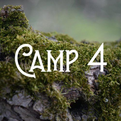 BushtimeSummer2020_Camp4