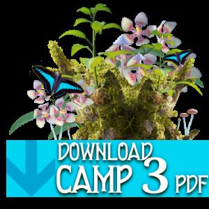 PDF_button_camp3