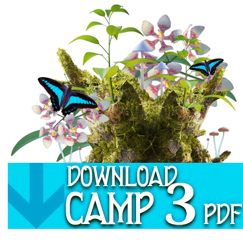 PDF_button_camp3